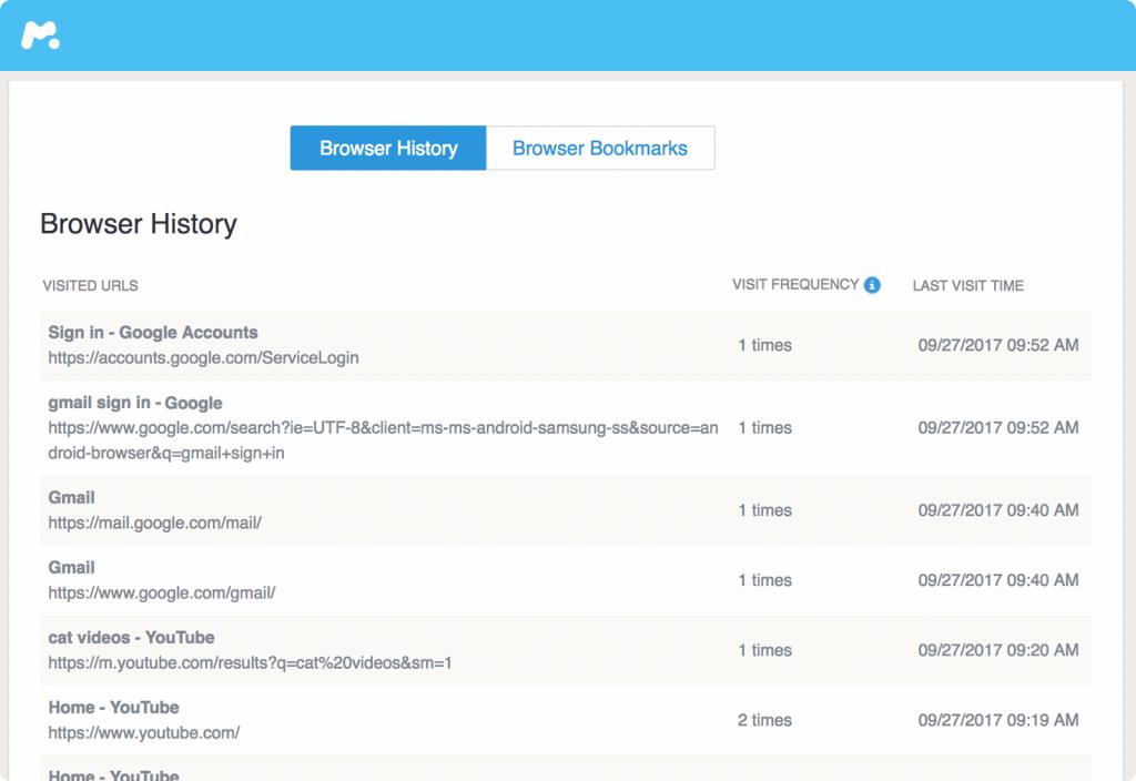 mspy Browser history